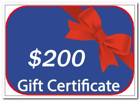 personalized snow globe gift certificate $200.00